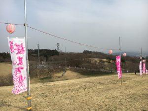 加護坊山の桜祭り
